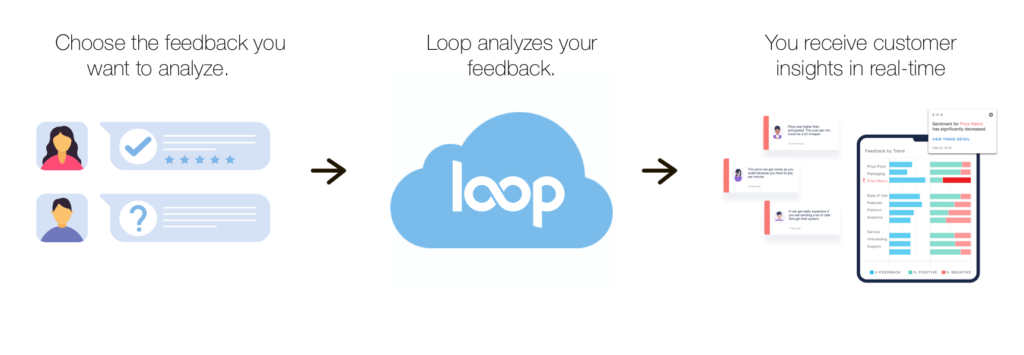 What is LoopVOC?